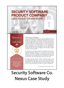 Security Software Company Nexus Case Study