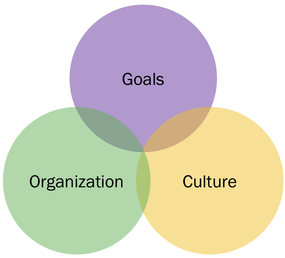 """Agile Leadership's Focus"""