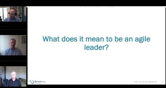 """""""agile leader"""""""