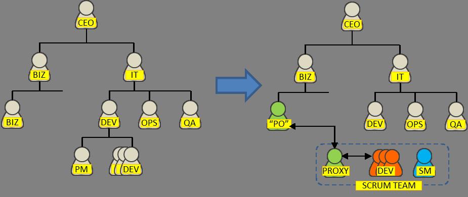 Functional organization to Scrum Teams