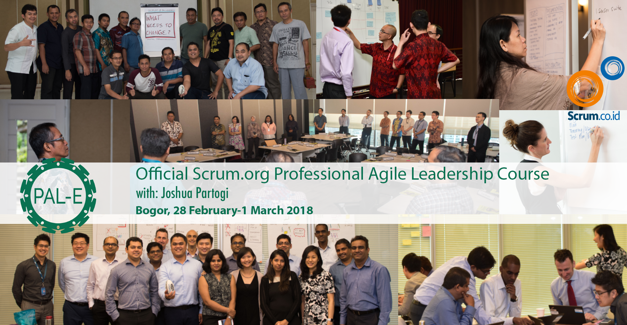 Professional Agile Leadership in Bogor with Joshua Partogi