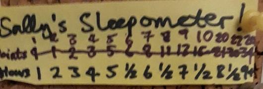 Sally Sleep