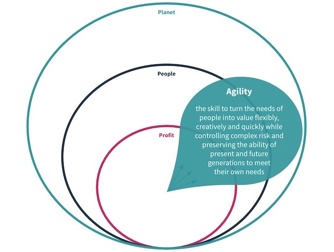 Agility for a Sustainable World