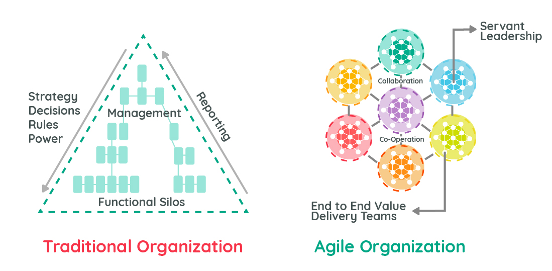 Traditional vs Agile Organizations