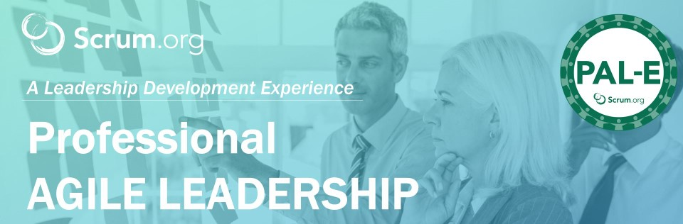Professional Agile Leadership Alex Ballarin