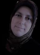 Profile picture for user Seyhan Baki